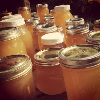 close-up of honey