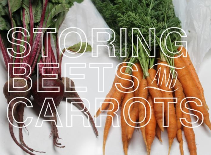 beets:carrots